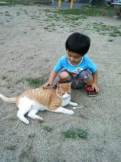猫と戯れる図